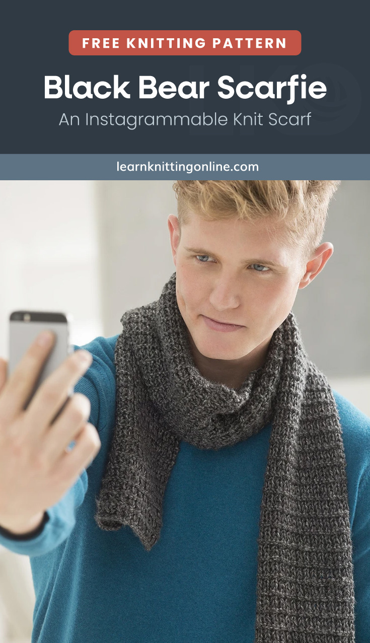 """Text area which says """"Free Knitting Pattern: Black Bear Scarfie - An Instagrammable Knit Scarf, learnknittingonline.com"""" followed by a blonde man wearing a gray knitted scarf and a blue long-sleeved sweater while taking a selfie"""